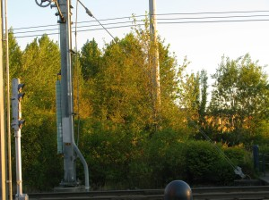 Weighted catenary system July